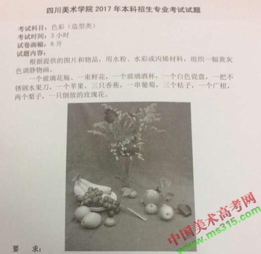 四川美术学院2017年贵州考点造型专业色彩考题.jpg