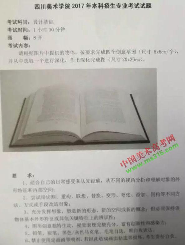 四川美术学院2017年设计基础.webp.jpg